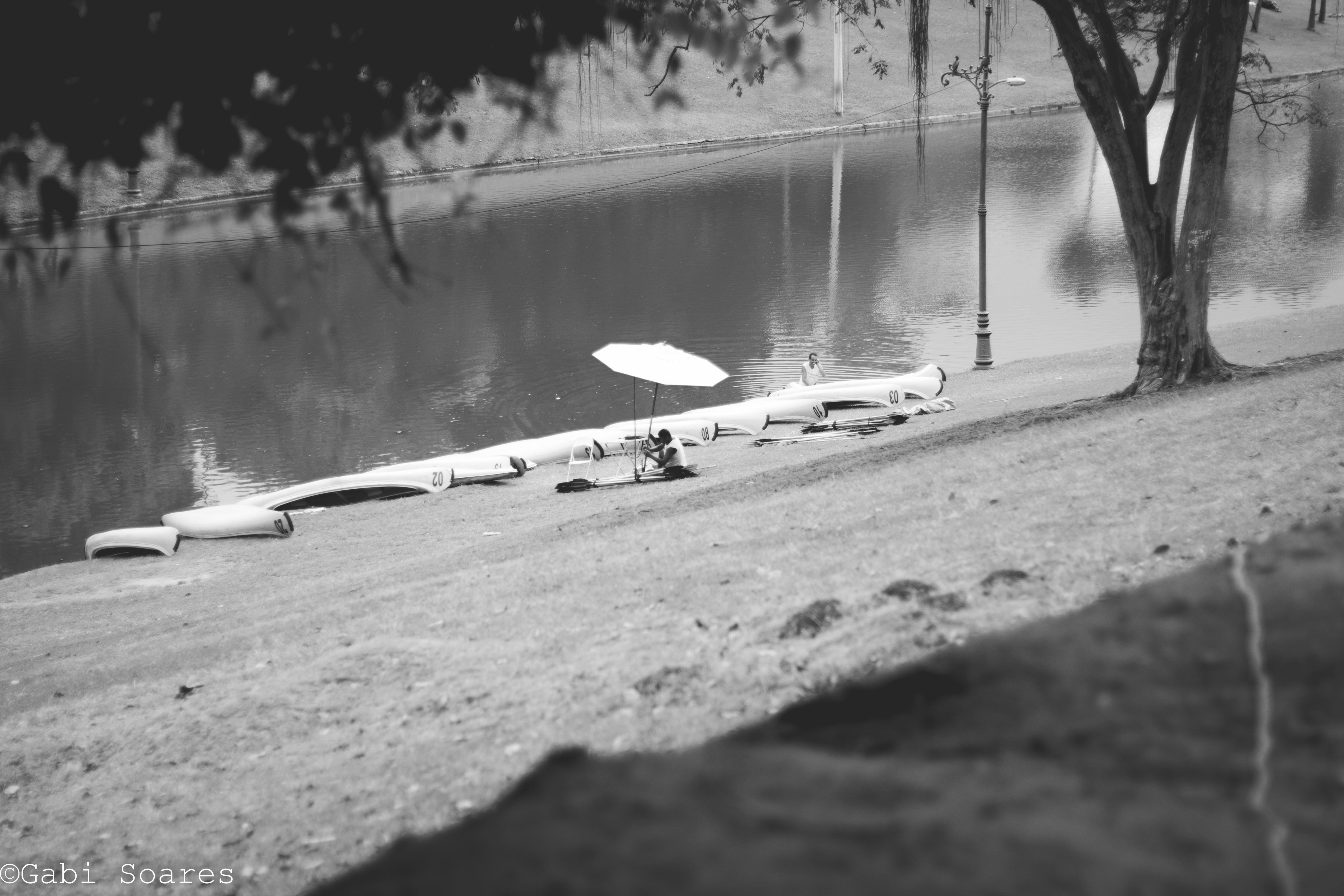 Quinta da boa vista, rio de Janeiro